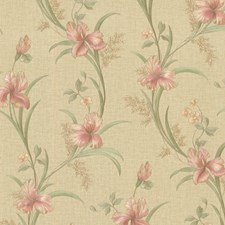 Pink Transitional Wallpaper Wallcovering by Brewster