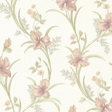 Rose Transitional Wallpaper Wallcovering by Brewster