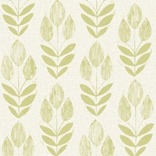 Light Green Wallcovering by Brewster