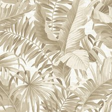 Taupe Coastal Wallpaper Wallcovering by Brewster