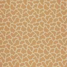 Sienna Wallcovering by Schumacher Wallpaper