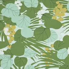Palm Wallcovering by Schumacher Wallpaper