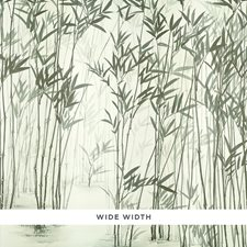 Ink Wallcovering by Schumacher Wallpaper