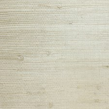 Creme/Beige/Taupe Contemporary Wallcovering by JF Wallpapers