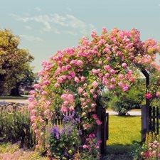 8-936 Rose Garden Wall Mural by Brewster