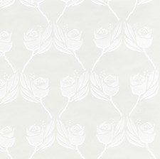 Eggshell Wallcovering by Cole & Son Wallpaper