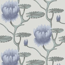 Blu/Aq/Pearl Botanical Wallcovering by Cole & Son Wallpaper
