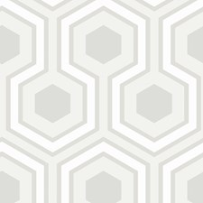 Dove Grey Wallcovering by Cole & Son Wallpaper