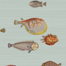 Pal Bl/Mlt Print Wallcovering by Cole & Son Wallpaper