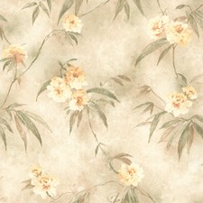 Green Trail Wallcovering by Brewster