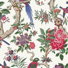 Fuschia Wallcovering by Cole & Son Wallpaper