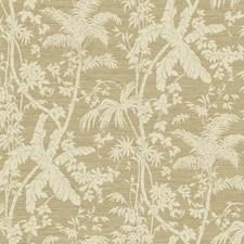 Cream/Tan/Light Brown Botanical Wallcovering by York