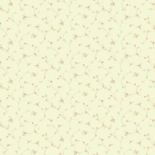 Off White/Pink/Light Green Floral Wallcovering by York