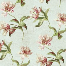 Aqua/Taupe/White Floral Medium Wallcovering by York