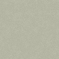 Gray/Cream Small Prints Wallcovering by York