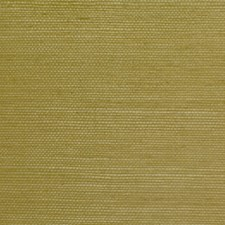 6863-19 Sisal Mid-Green NC10 by Clarence House