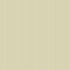 Pale Gold/Cream Stripes Wallcovering by York