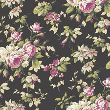 Black/Hot Pink/Magenta Floral Wallcovering by York
