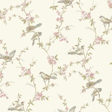 Cream/Aqua/Pale and Medium Pink Trellis Wallcovering by York