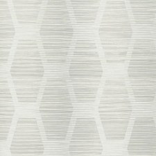 CY1572 Congas Stripe by York