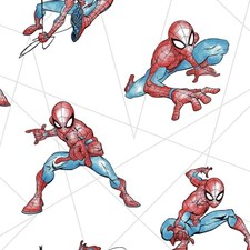 DI0939 Spider-Man Fracture by York