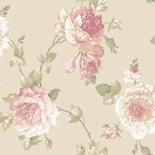 Pale Gold/Light to Dark Pink/White Floral Medium Wallcovering by York