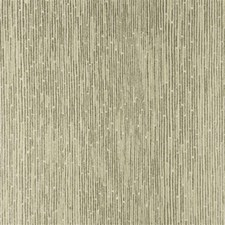 Champagne Stripes Wallcovering by Threads