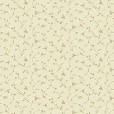 Beige Grasscloth Wallcovering by York