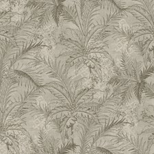 Gray/Silver/Cream Botanical Wallcovering by York