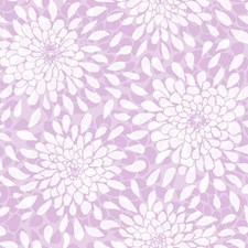 Orchid/Lavender/Silver Frost Floral Wallcovering by York