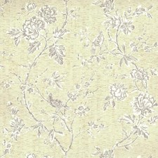 White/Off Whites/Blacks Floral Wallcovering by York