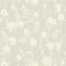 LG1381 Queen Annes Lace by York