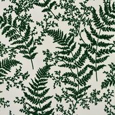 ME1585 Forest Fern by York