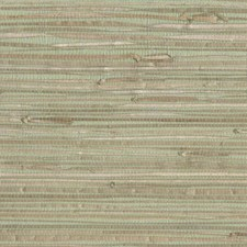 Greens Grasscloth Wallcovering by York
