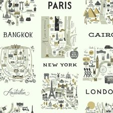 RI5161 City Maps by York