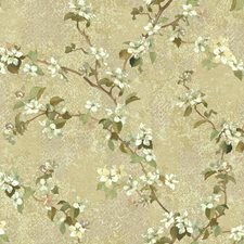 Beige/Tan/Brown Botanical Wallcovering by York