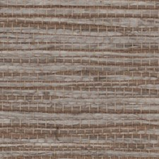 Comans Wallcovering by Innovations