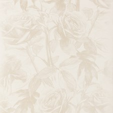 Pearl Wp Floral Medium Wallcovering by Clarke & Clarke