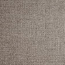 Bronze Solid W Wallcovering by Clarke & Clarke