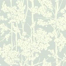Light Blue/Ivory Botanical Wallcovering by Kravet Wallpaper