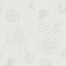 Mercury Novelty Wallcovering by Kravet Wallpaper