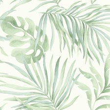 White/Green Tropical Wallcovering by Kravet Wallpaper