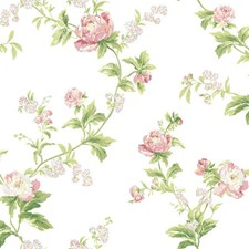 Cream/Dusty Rose/Pale Pink Floral Wallcovering by York