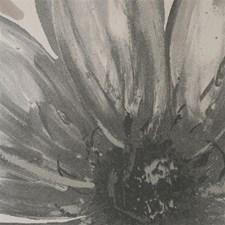 WAM7207 Verve Charcoal by Winfield Thybony