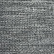Midnight Solid Wallcovering by Winfield Thybony