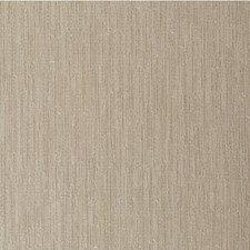 Shitake Solid Wallcovering by Winfield Thybony