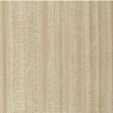 Blonde Modern Wallcovering by Winfield Thybony