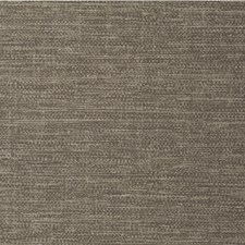 Pepper Solid Wallcovering by Winfield Thybony