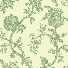 Beige/Green Floral Medium Wallcovering by York