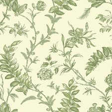 Cream/Yellow/Green Toile Wallcovering by York